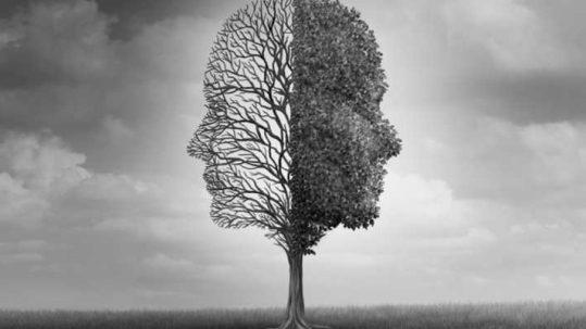 Ipsimed en los VII Encuentros de Otoño de la Federación de Asociaciones de Psicólogos y Médicos Psicoterapeutas de España