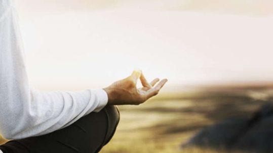 Mindfulness para el equilibrio físico, mental y emocional Edicion Primavera