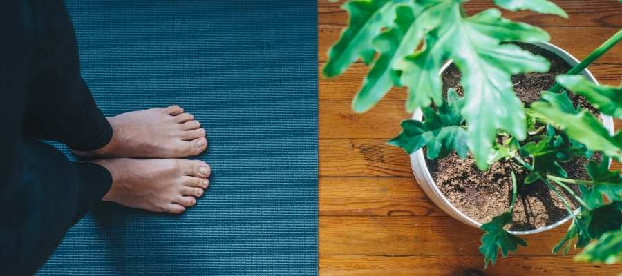 Yoga Terapeutico_Ipsimed